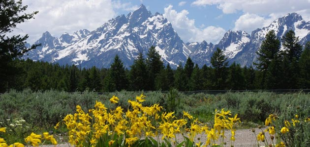 Jackson-Hole-Wyoming-Attractions